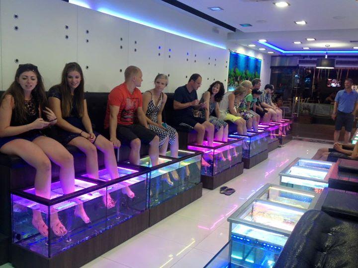 NEXT Level Fish Spa