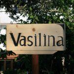 Vasilina Studios