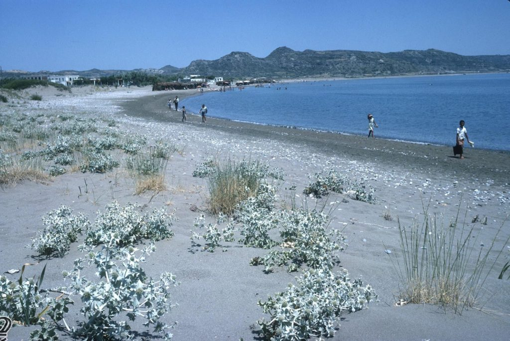 Faliraki Beach 1965